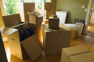 Moving Boxes in Room
